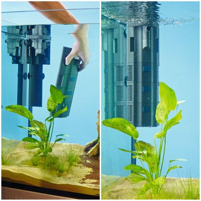 Filtros en acuarios plantados
