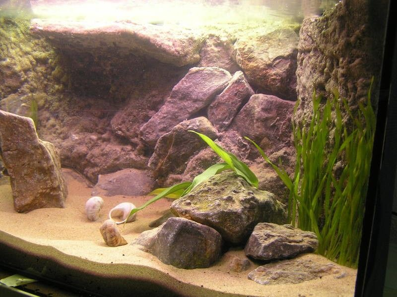 Arena para acuarios plantados