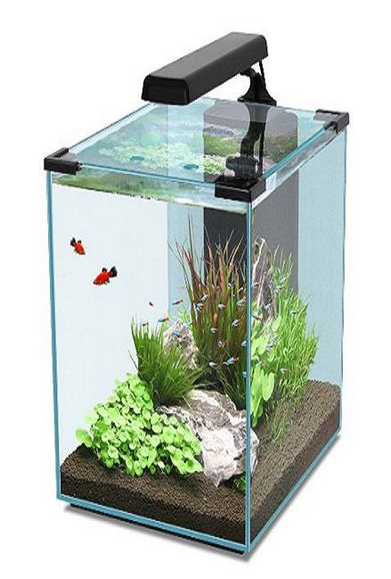 Dimensiones del acuario