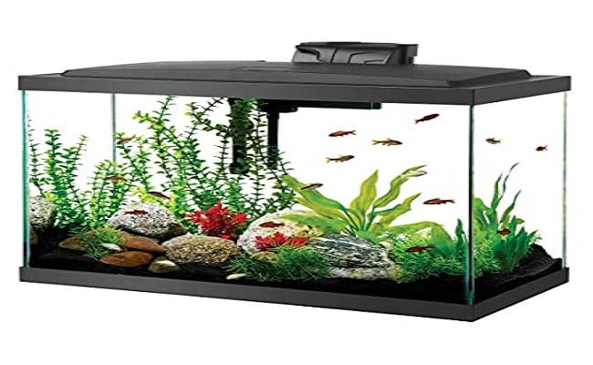 acuario usado