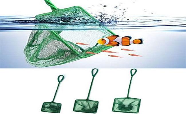 Redes de peces