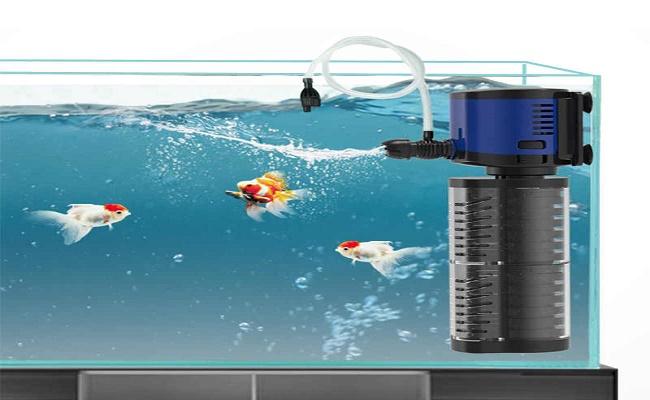 Que hace el filtro por tu acuario