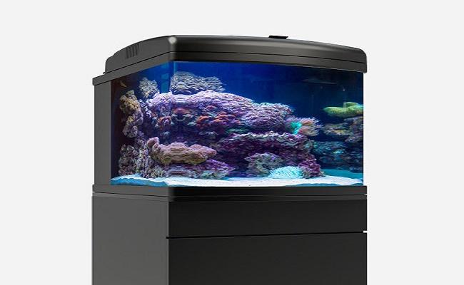 acuario de 113 litros. 0-